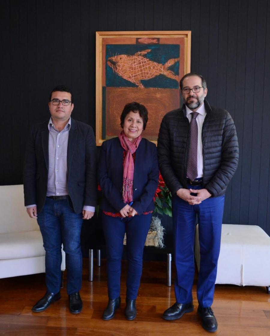INBAL y Colima impulsan proyecto social de Educación Artística