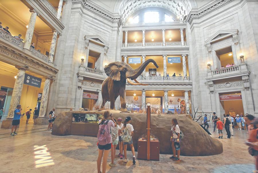 Cierre de gobierno parcial en EU golpea a 19 museos