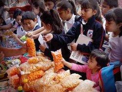 Diputada Ana Priscila González pide se supervise lineamientos en la venta de alimentos chatarra en escuelas
