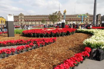 Inauguran Jardín Cultural del Zócalo